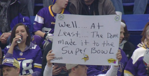viking-fan
